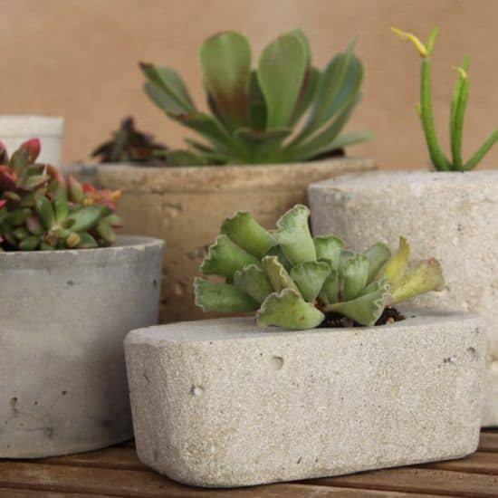 DIY Cement Garden Ideas to make your yard stand out