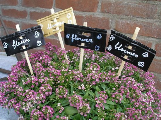 Wine Bottle Capsule Plant Labels