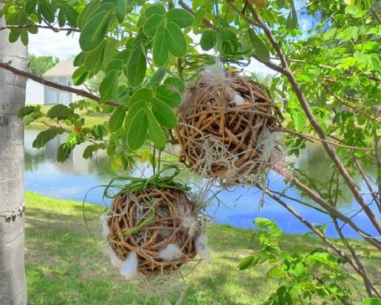DIY Grapevine Balls for Nesting Birds