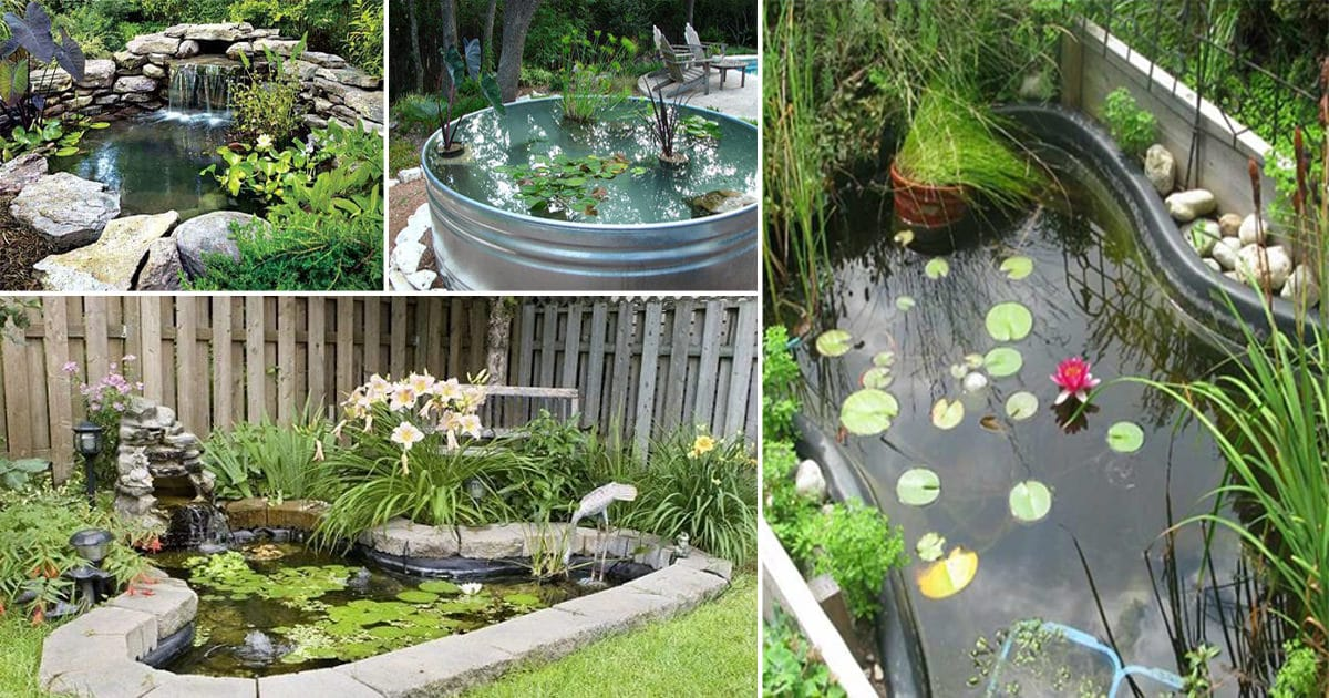 21 diy water pond ideas diy water gardens for backyards for Small garden with pond design