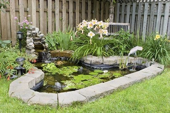 Balcony Garden Web & 21 DIY Water Pond Ideas | DIY Water Gardens For Backyards ...
