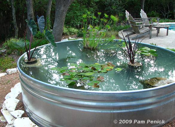 Water Pond Ideas