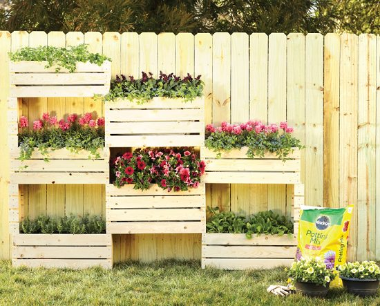 Genius Vertical Gardening Project