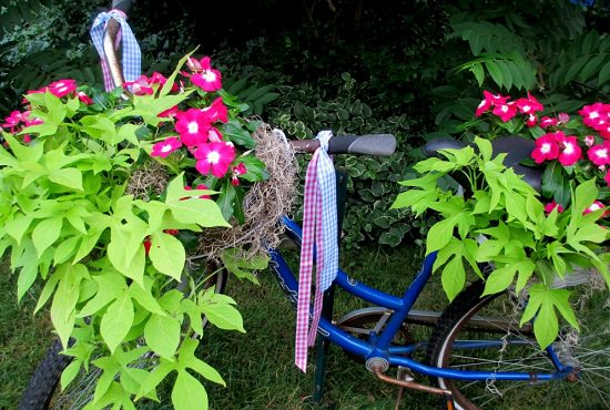 Bicycle Planter DIY