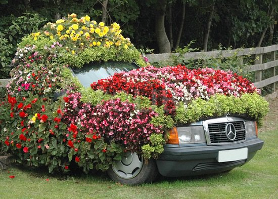 Some of the top Old Car Garden Arts