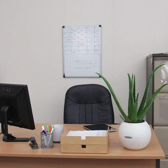 The Plants From Aloe Genus Especially Vera Is Undoubtedly Best Choice For Your Office Desk It S A Low Maintenance Plant And Has Proven