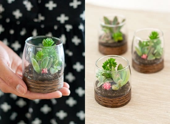 53 Diy Terrarium Ideas That Will Blow Your Mind Away Balcony