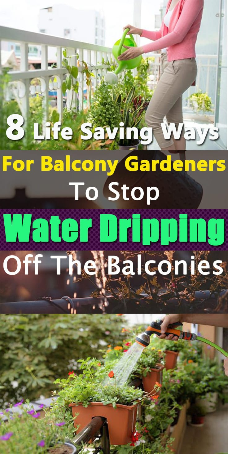 If you're worried about water dripping off from the planters in your balcony, down into the balconies of the neighbors below--must learn about our 8 tricks to stop this.