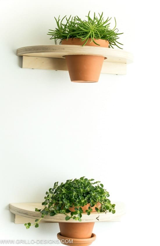 diy pair cute plant shelves