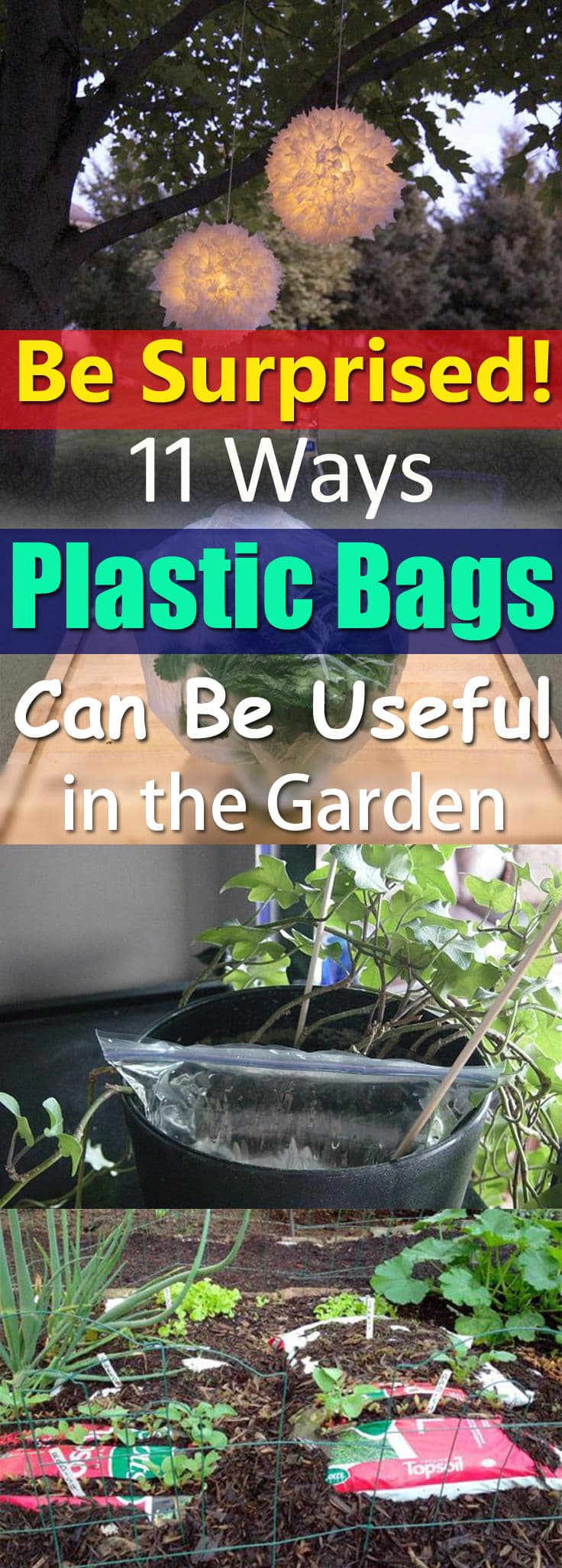 You don't believe but plastic bags can be so useful in the garden. Find out 11 DIY Ideas!