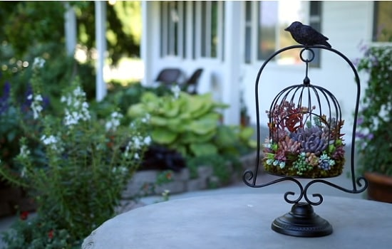 diy birdcage planter ideas