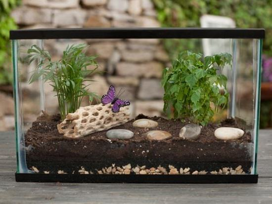 DIY Miniature Indoor Garden