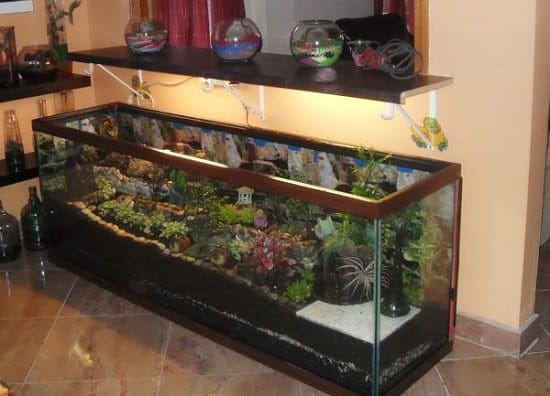 Fantasy World Fish Tank Terrarium