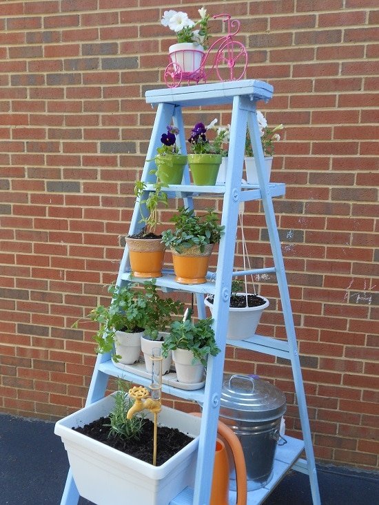 Ladder planter idea