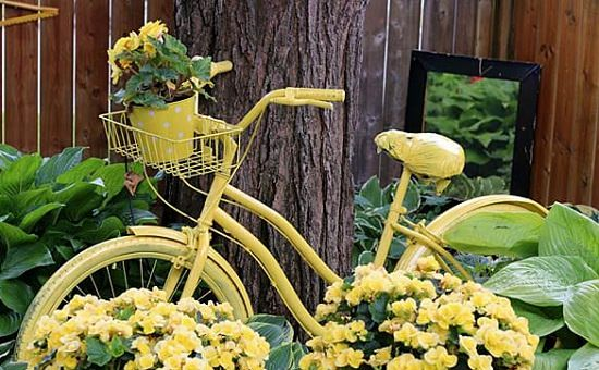 Bicycle Garden