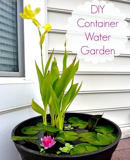 12 Soothing Diy Container Water Feature Projects Balcony Garden Web