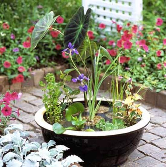 Water Container Garden: 13 Peaceful DIY Container Water Garden Ideas For Container