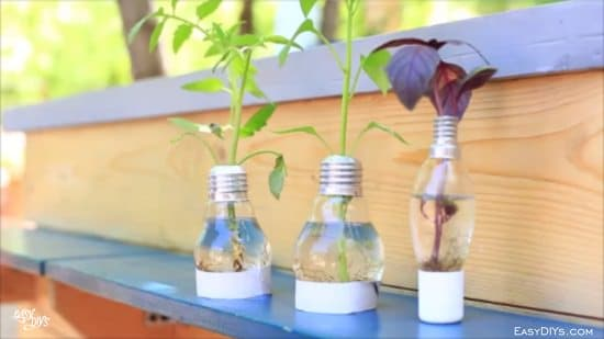DIY Light Bulb Planter