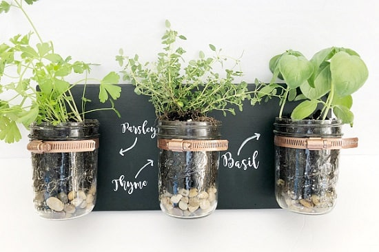 No-Money Home Decor Ideas With Indoor Plants 2