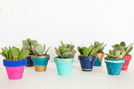 Overly Cute DIY Mini Planters for Succulents that are cool
