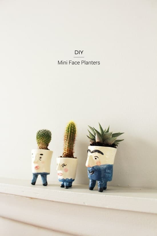 Overly Cute DIY Mini Planters for Succulents that you can use