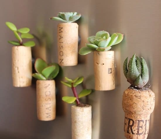 Overly Cute DIY Mini Planters for Succulents for gifts