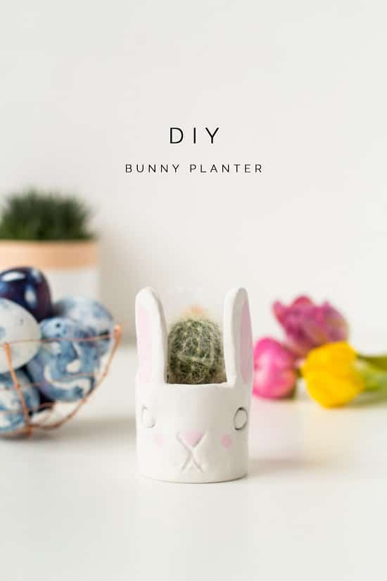 Overly Cute DIY Mini Planters for Succulents everyone can try