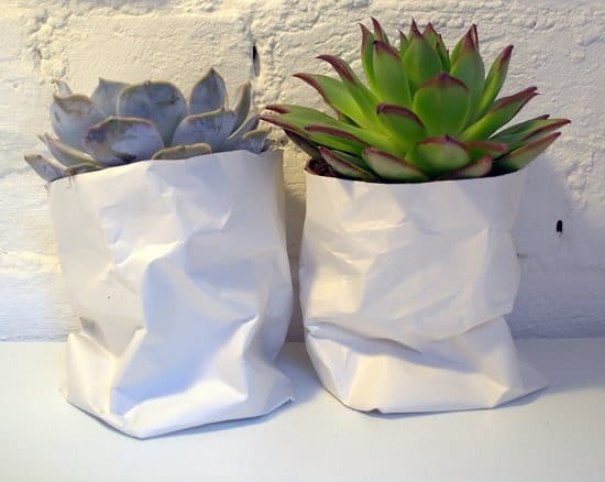 Recycle Papers Into 14 Diy Paper Plant Pots Balcony Garden Web