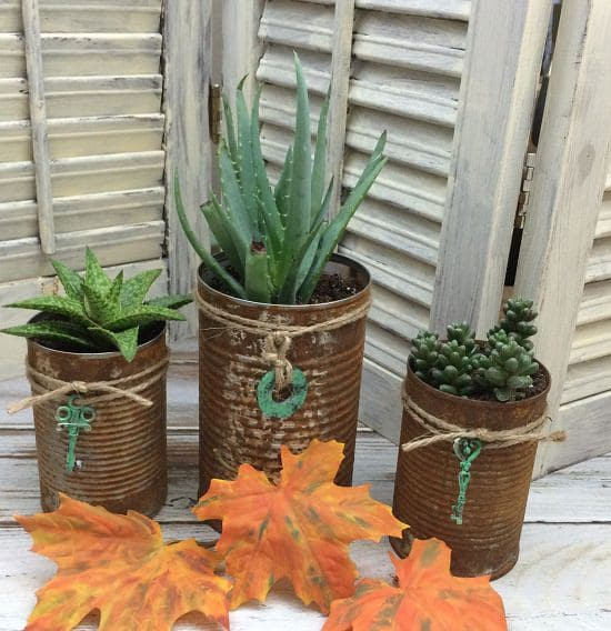 Rusted Can Planters