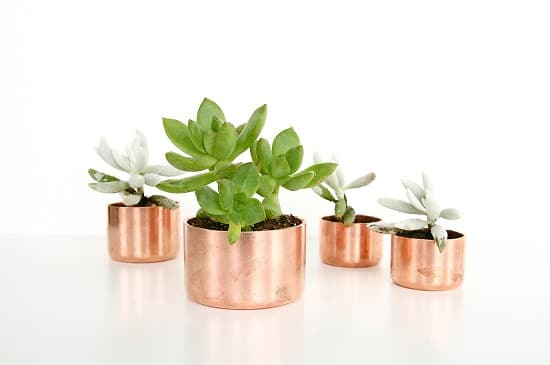 Mini Copper Planters
