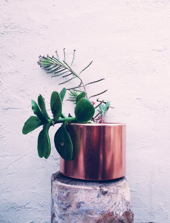 Upcycled Copper Planters
