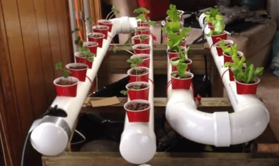 Try Growing Plants In The Hydroponic Culture At Home With This PVC  Hydroponic Garden Idea. This Is A Bit Time Consuming Project, And You May  Need Someone By ...