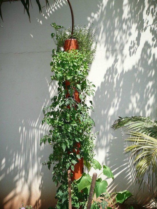 Vertical PVC Pipe Garden