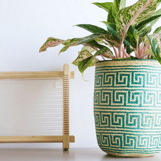 diy basket planter