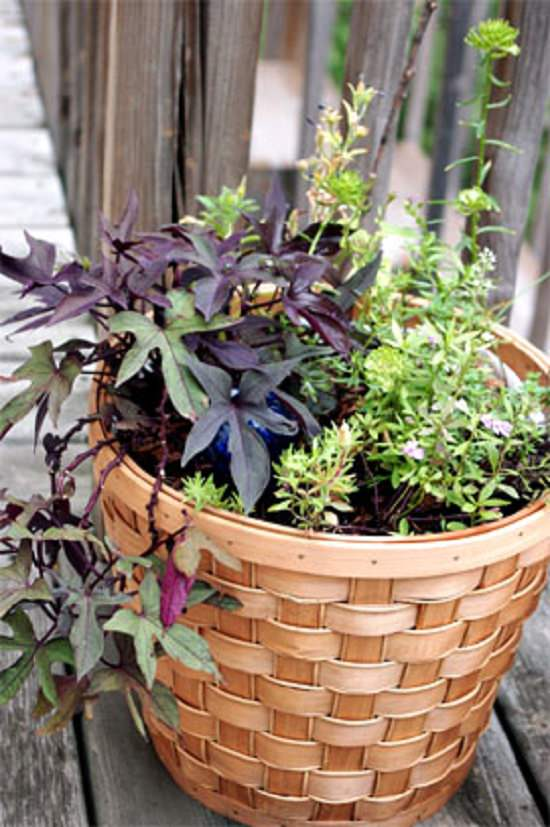 How to Convert any Basket into a Planter