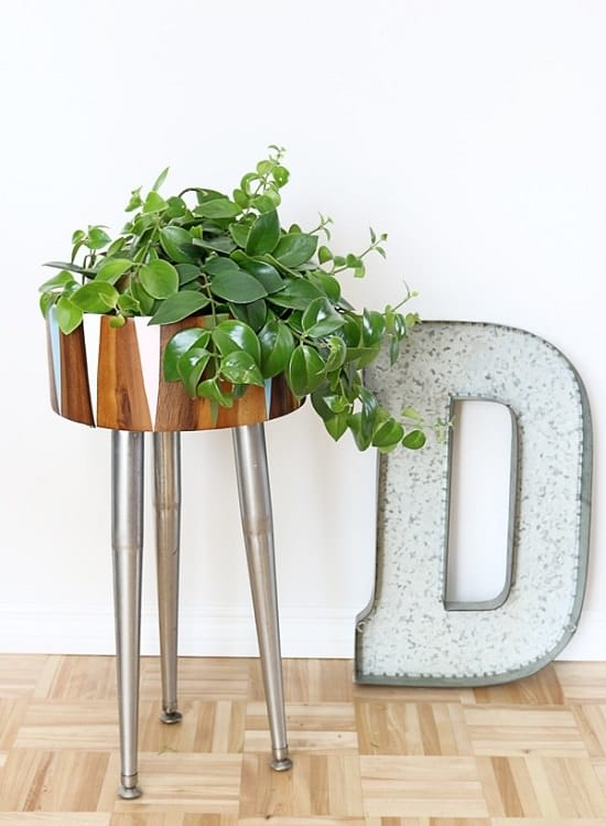 Wooden Bowl Modern Plant Stand