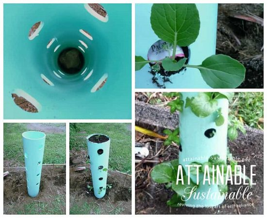 Vertical PVC pipe planters
