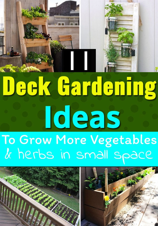 11 Deck Gardening Ideas To Grow More Vegetables U0026 Herbs In Small Space 2