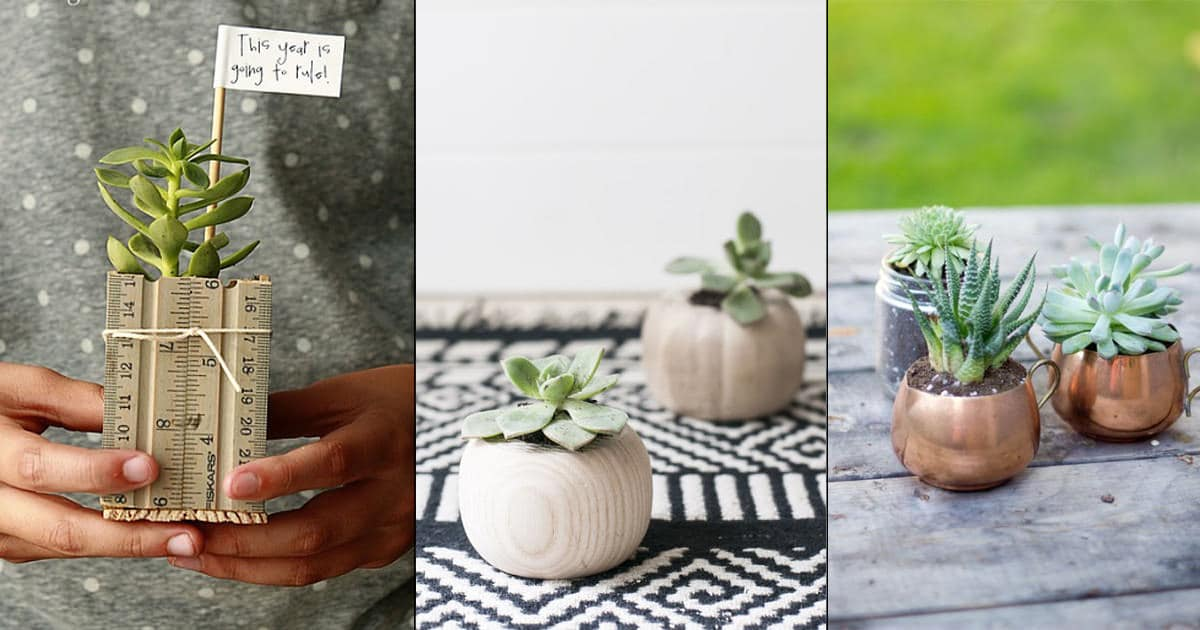 24 Most Creative Diy Succulent Planters On The Web Balcony Garden Web