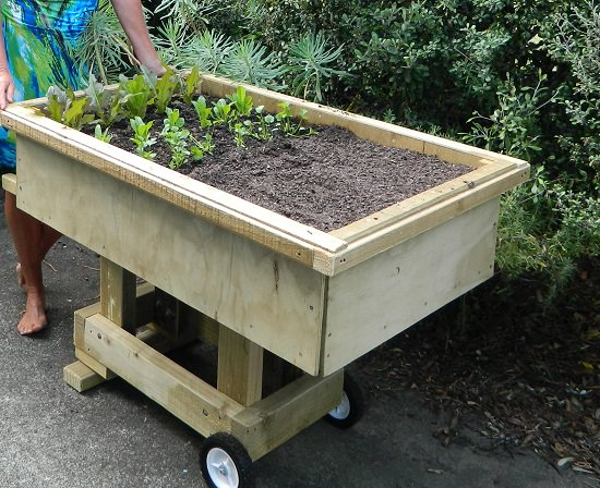 Mobile Garden For Summer