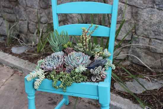Succulent Chair porch planter ideas