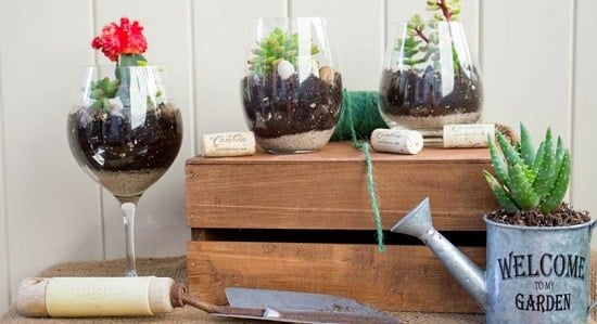 Things to Do with Wine Glasses
