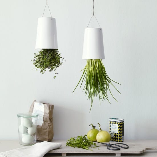 upside down herb planters