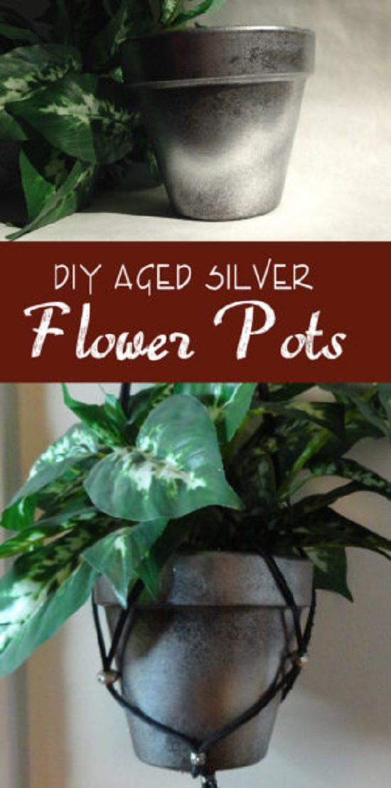 Some of the most amazing DIY Silver Planter Ideas