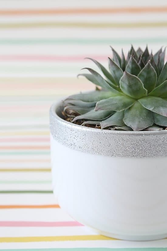 DIY Silver Planter Ideas that are best for all plants