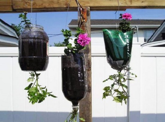 Recycled Soda Bottle Upside Down Planters
