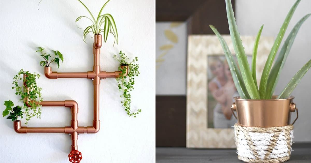 Cheap Diy Copper Planters For Indoor Plants That Look Expensive Balcony Garden Web