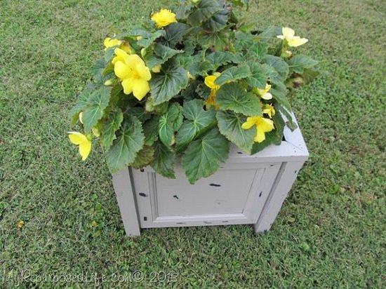 DIY Filing Cabinet Planter