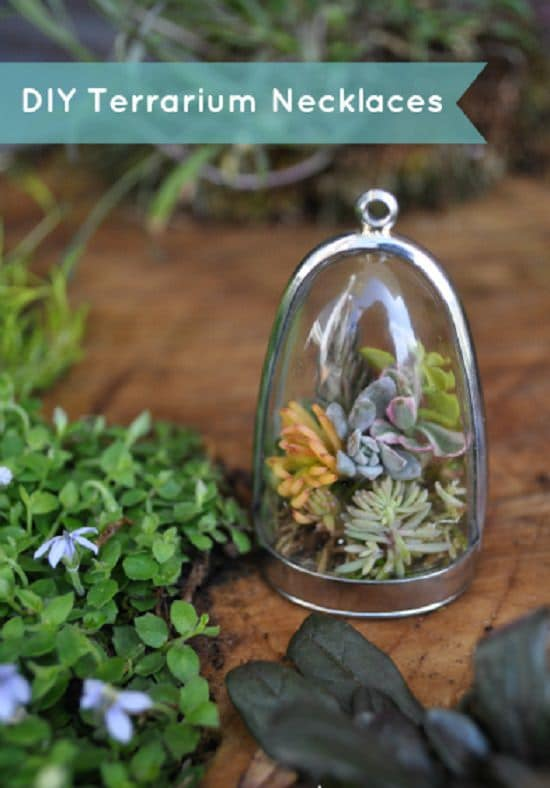 DIY Closed Terrarium Ideas 6
