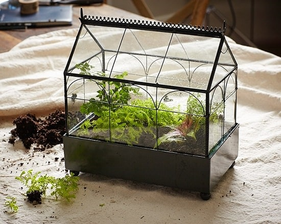 DIY Closed Terrarium Ideas 2